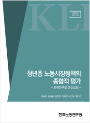 Comprehensive Evaluation of the Youth Labor Market Policy: Literature Review